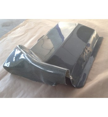 Protection pompe a essence Clio GrA